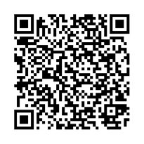 QR link for Wireless telephony, in theory and practice